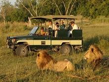 tanzania-safari11111
